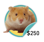 Hamster Hero - for those heroic fundraisers who have raised $250