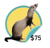 Crafty Ferret - for those crafty ones who have raised $75