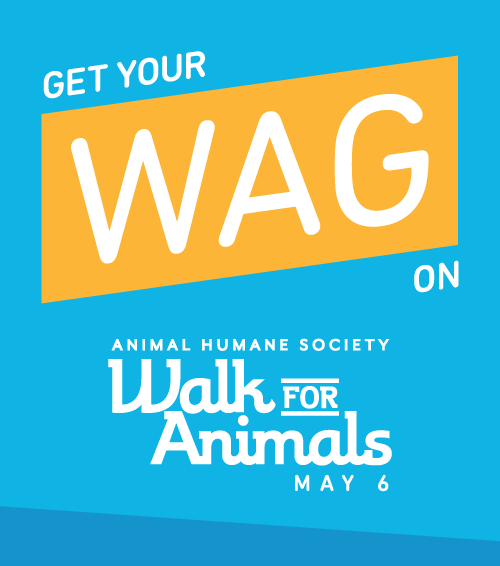 Walk for Animals 2017!