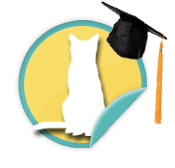 Alumni Cat - for those walkers whose furry felines were adopted from Animal Humane Society