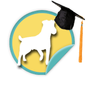 Alumni Dog - for those walkers whose perfect pooches were adopted from Animal Humane Society