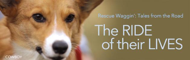 Rescue Waggin