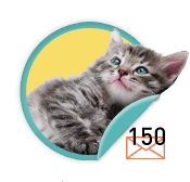 Kitten Purrer - for those who have purr-fected the art of the ask and sent 150 emails