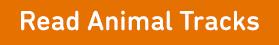 Read Animal Tracks